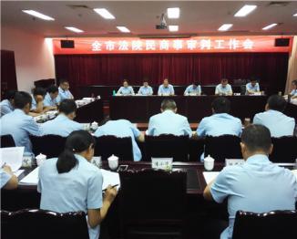 雅安中院召开全市法院民商事审判工作会议
