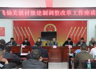 飞仙关镇村级建制调整改革工作座谈会